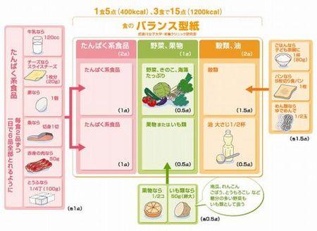 食の『バランス型紙』.jpg